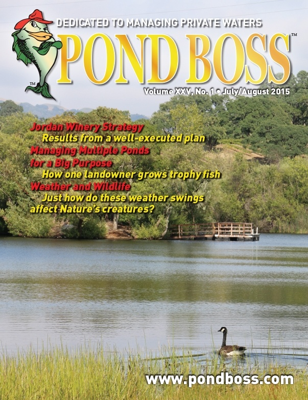 Managing Multiple Ponds to Create the Ultimate Fishery - Pond Boss