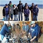 DE beach grass & tree repotting-d
