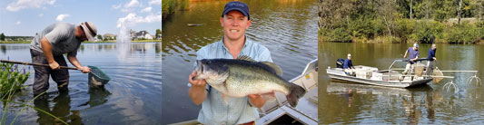 Exceed Your Fishery Goals with A Fisheries Management Plan