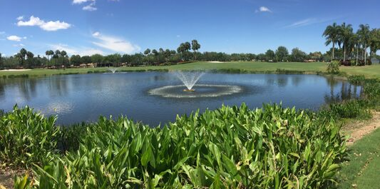 Floating Fountain FL