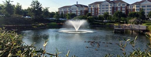 Enhance Your Community Pond