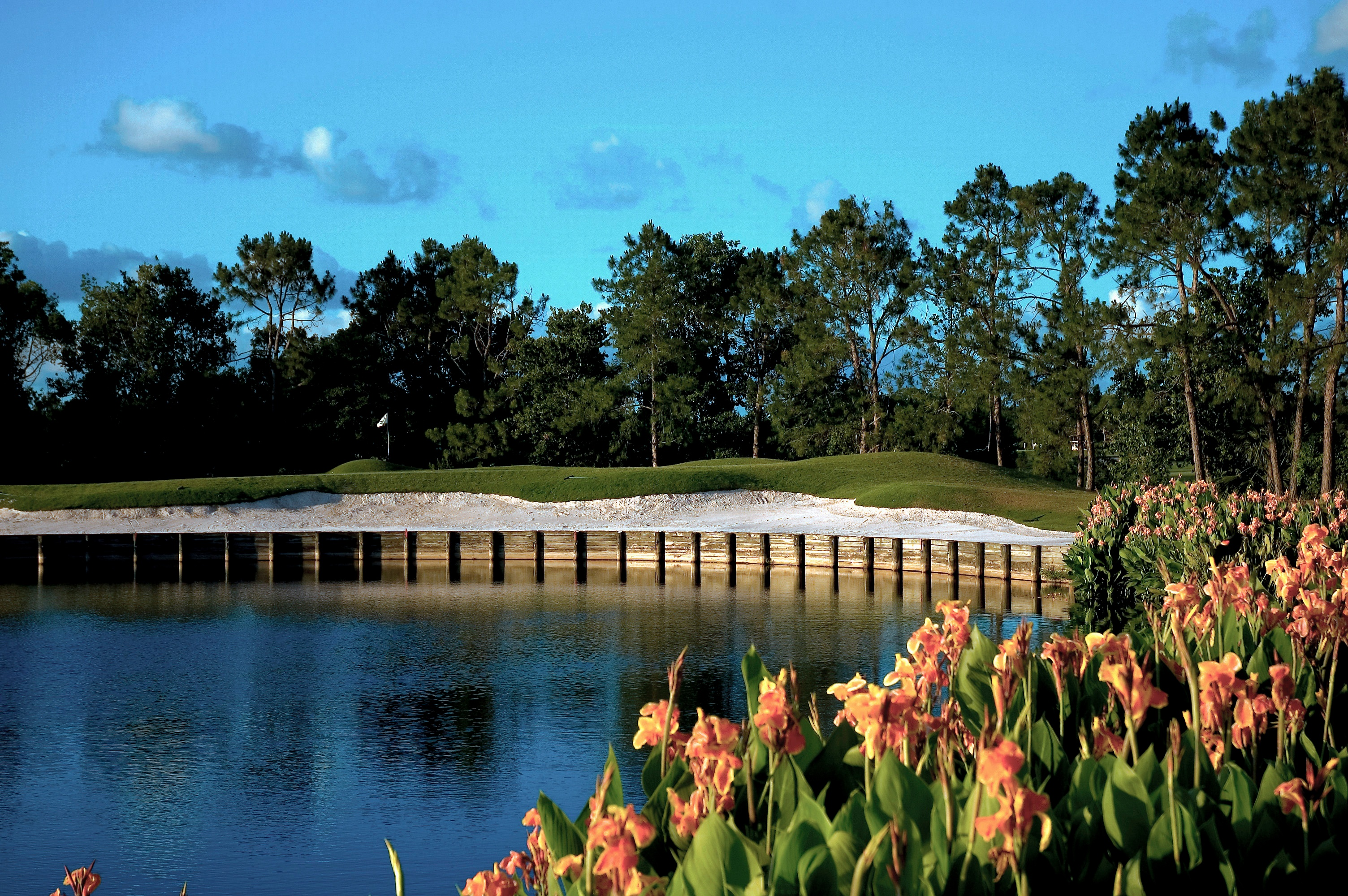 Golf_Course_Pond_Buffer