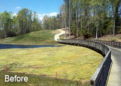 Golf_course_Irrigation_Pond_New_Kent_VA_6.50_acres_BEFORE_Filamentous_algae_treatments