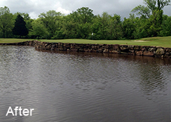 Golf_course_pond_Davidson_NC_1.1_acres_AFTER_algae_treatments_1