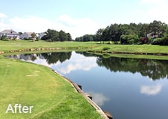 Golf_course_pond_Glen_Allen_VA_3.0_acres_AFTER_algae_treatments_1