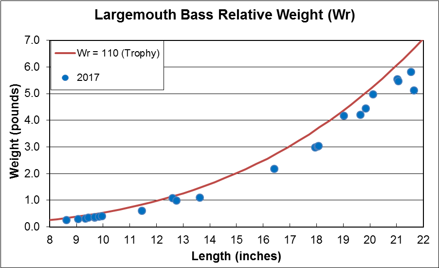 Largemouth Bass Relative Weight