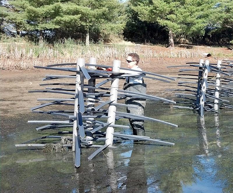 Fish Cover Fishiding