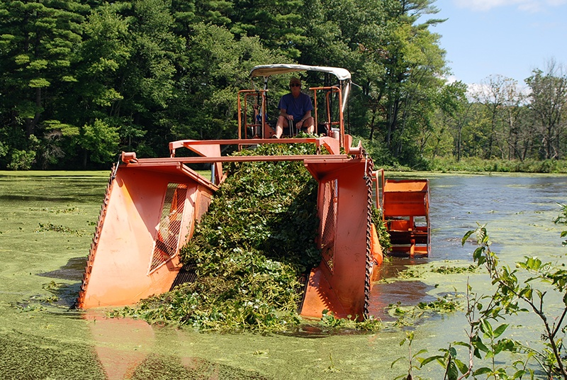 Mechanical Harvesting Aquatic Weeds