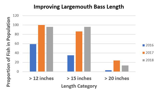 Improving-Largemouth-Bass-Length-Graph