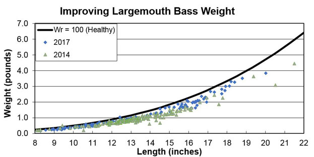 Improving-Largemouth-Bass-Weight-Graph