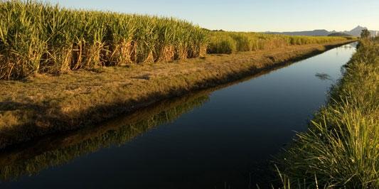 Irrigation-Canal-Management