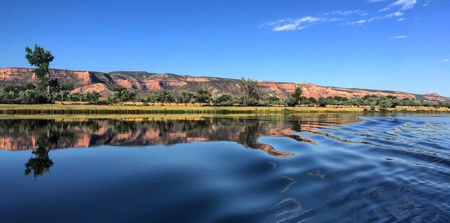 Lake Management
