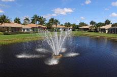 Florida Community Pond