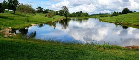 Lake-and-Pond-Management-for-Wineries