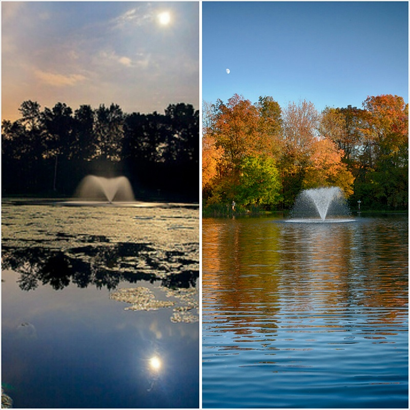 Lake_Chatham_Before__After_Client_Sent_Chatham_NJ_10.12_c
