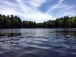 Lake_Wildwood_Upton_MA_fan_wort__variable_milfoil_40_acres_JOnorato_06.15_e.jpg