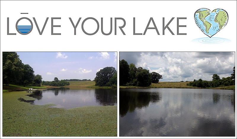Love Your Lake 2014 campaign week 4