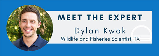 Meet-the-Experts-dylan-fina