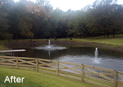 Private_Pond_Prince_William_County_VA_0.60_acres_AFTER_watermeal_algae_pondweed_treatments
