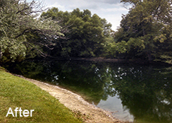 Private_Pond_Yorktown_VA_0.50_acres_AFTER_algae_treatments