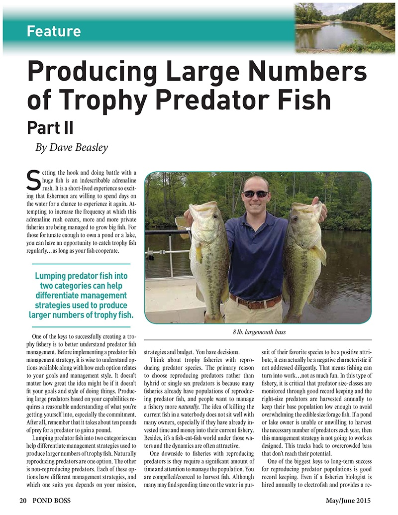 Producing_Large_Numbers_of_Trophy_Predator_Fish_Part_II_Page_1_c