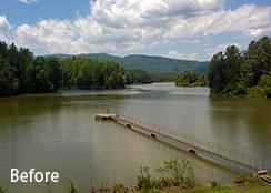 Algae Bloom In Local Reservoir