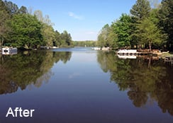 Residential_Lake_Caroline_County_VA_273_acres_AFTER_hydrilla_treatments-1