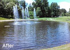 Retirement_community_pond_Fort_Belvoir__Virginia_0.45_acres_AFTER_algae_treatments