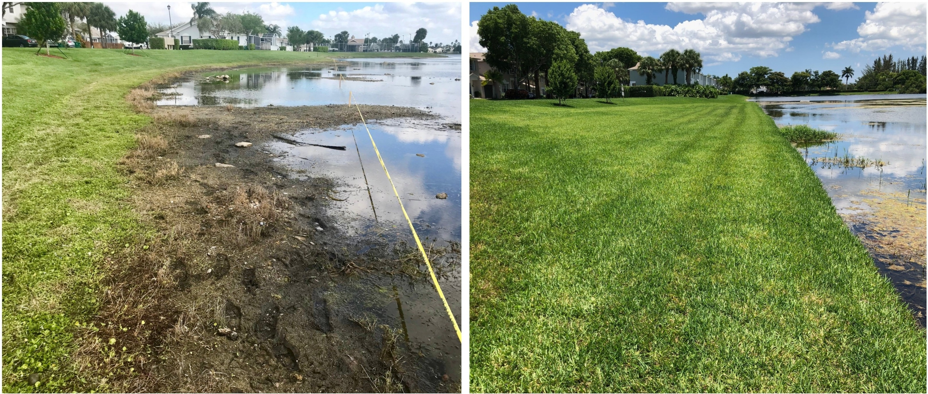 Restoring Shoreline with SOX Mesh Barrier Technology, Before and After