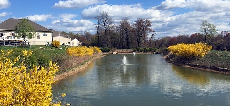 Spring_Scenic_Pond_Brook_Crossing_Coatsville_PA_04.15_JohnP_c-835486-edited