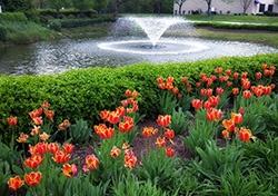 WINNER_for_2016_Spring_Cover_Image_-_SpringScenicPond_Mary_Immaculate_NewportNewsVA_04.15_DerekJ_e.jpg