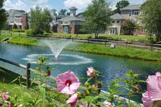 Community Pond in Virginia