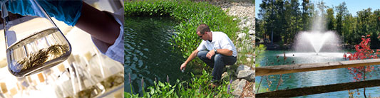 Restore Balance In Your Waterbody with Water Quality Management