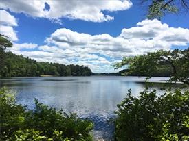 annual-lake-maintenance.jpg