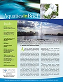 aquatics-in-brief-winter-2015.jpg