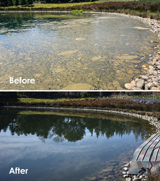 before-and-after-ranch
