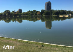 Restored Water Quality of A Park Lake