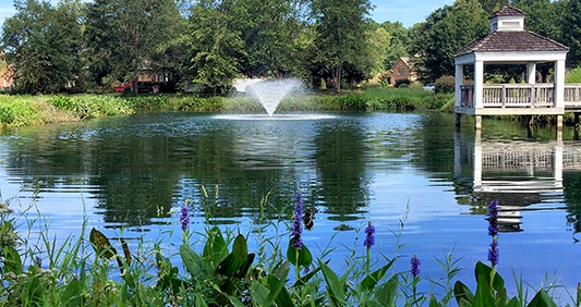 community-pond-fountain-beneficial-buffer