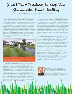 smart turf practices to keep your stormwater pond healthy