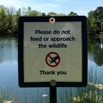 Do Not Feed Wildlife