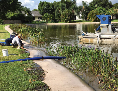 Bioengineered Living Shorelines