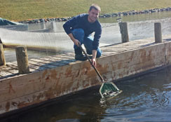 Stocking Fish In Community Lake