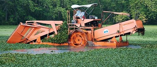 harvesting-floating-aquatic-weeds