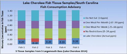 Mercury Levels in Fish Tissue