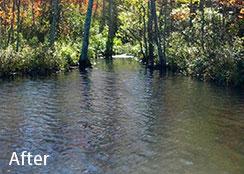 lake-mipmuc-after.jpg