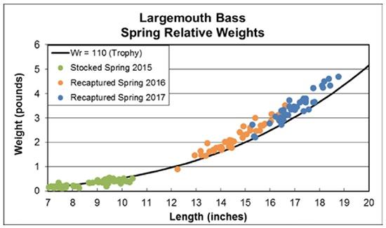 largemouth bass spring relative weights