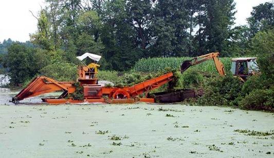 mechanical-harvesting-safe-nuisance-plant-removal