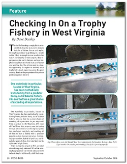 pond-boss-trophy-fishery-article-page-1-e-1.jpg