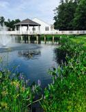 proactive pond management