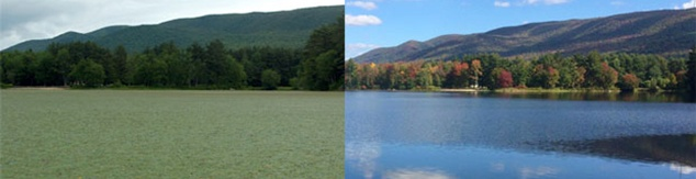 Lake Restoration Before and After